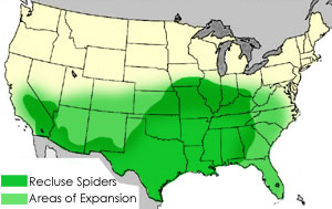 Protect Yourself From Brown Recluse Spiders - Us brown map with states